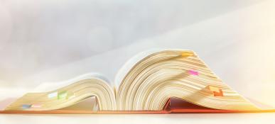 HYBRID-SEMINAR Aufstiegsfortbildung 2. Reihe Einführungsseminar Verwaltungsrecht